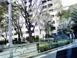 tokyo0099.jpg