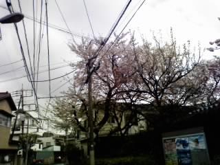 tokyo0074.jpg